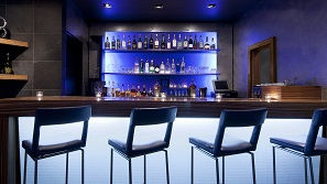 Bartini - The W Hotel lounge