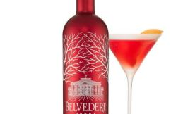Belvedere Red Martini - pinterest