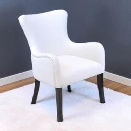 kaat-velvet-wingback-chair www.wayfair.ca